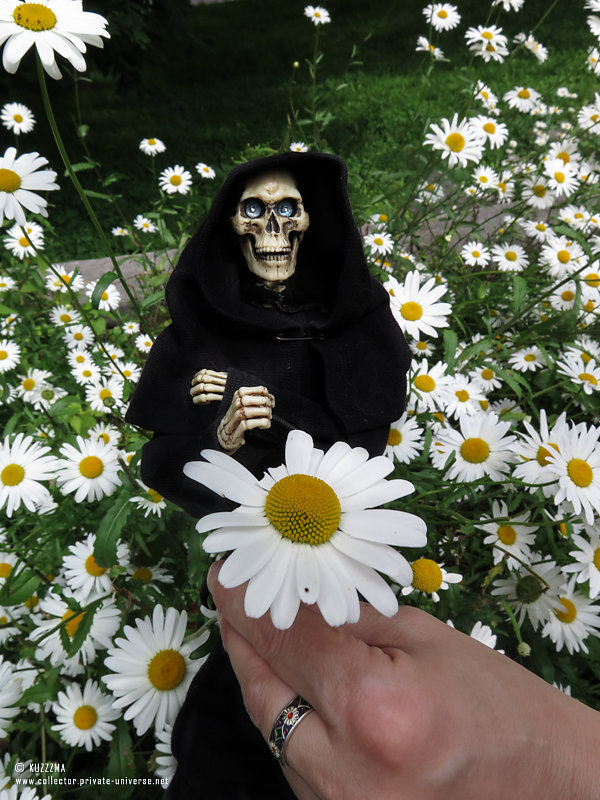 Death | Flowers for..