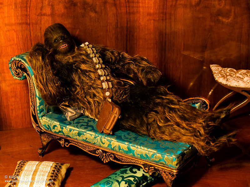 Chewbacca | Draw me like one of your french girls?
